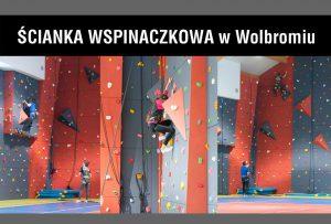 Ścianka wspinaczkowa – co oferujemy?